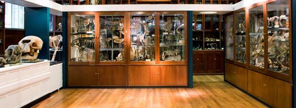 grant_museum